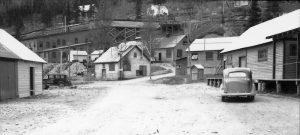 Island Mountain Mine
